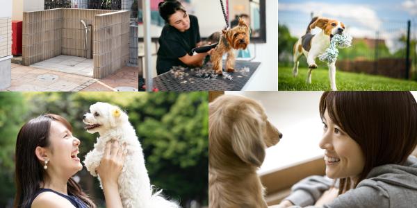 賃貸でペットと暮らすなら、さまざまな配慮がされたペット共生型賃貸を選ぶに越したことはありませんね